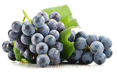 frutti-1